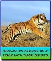 tiger squats