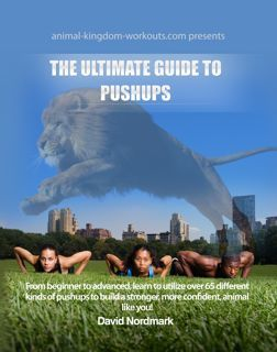 Ultimate Guide To Pushups