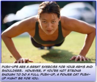A Push-Up - A Great Arm Exercise