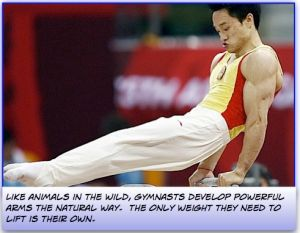 What Arm Exercises do gymnasts do?